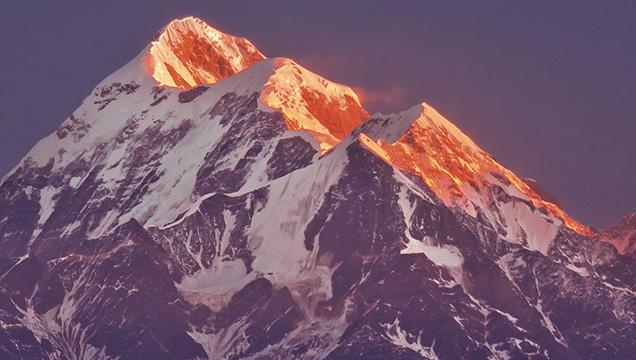 хималайски въглен